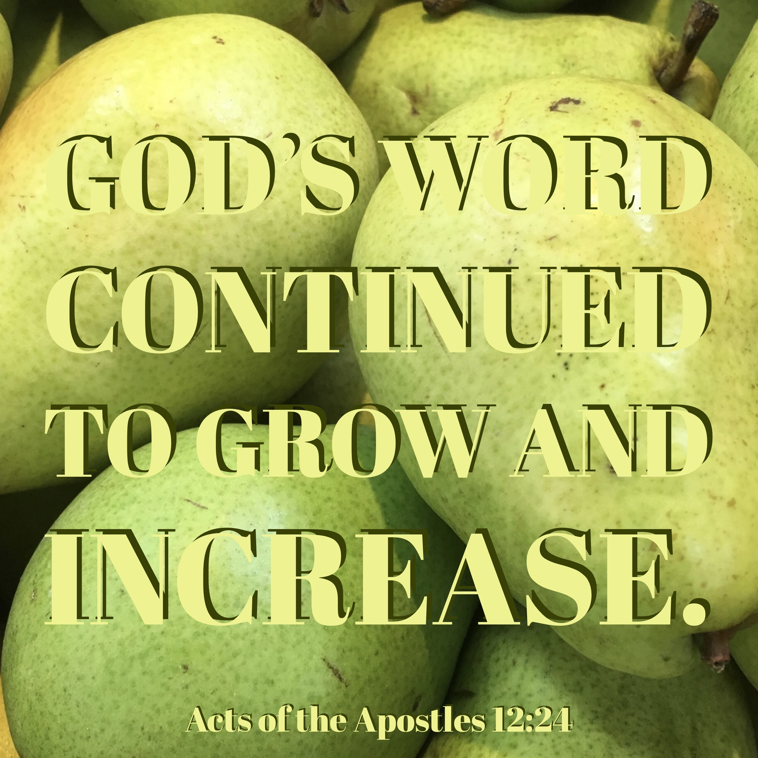 Acts of the Apostles 12:24 – Verse Images